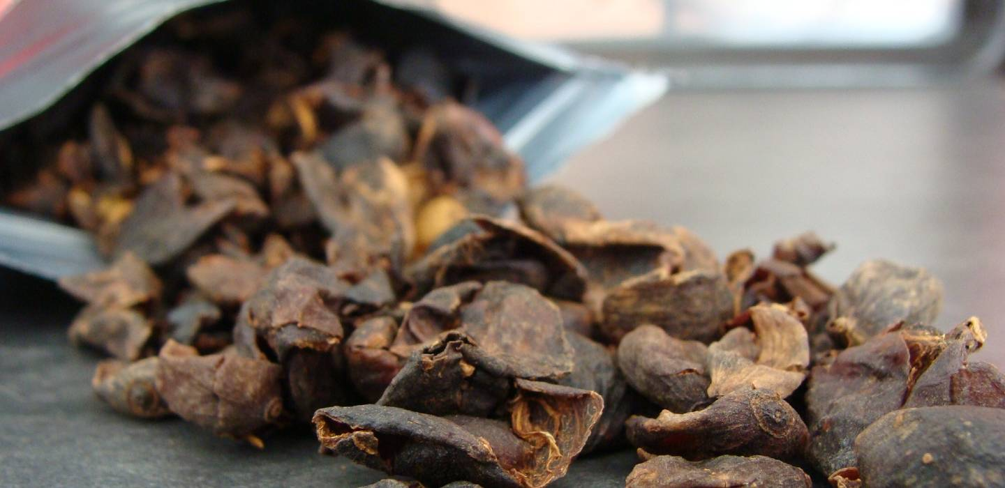 What exactly is cascara?