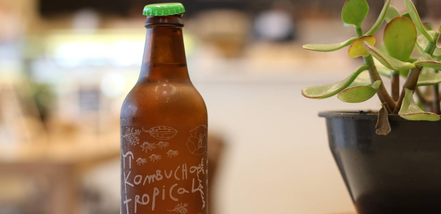 Kombucha Coffee: what is it, exactly?