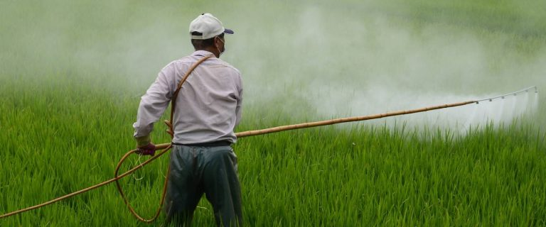 The harmful role of pesticides and how to minimise their impact