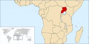 Coffee Producing Countries - Uganda 2